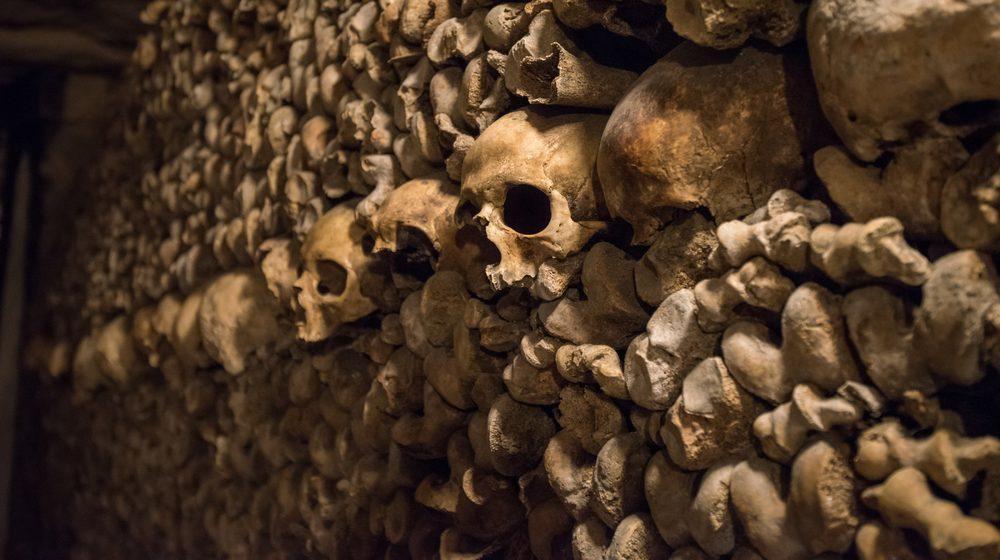 Les catacombes de Paris - Billets coupe-files avec audioguide